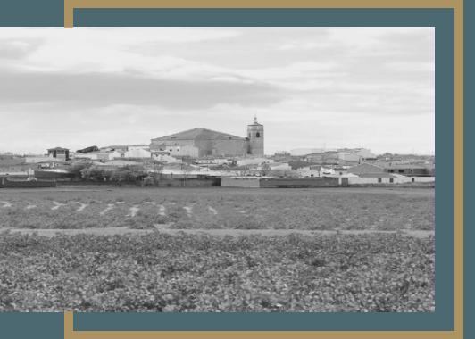 Vinos Cueva de España